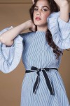 Black and white thin stripes frill sleeve dress